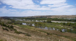 Clssical Murray river environment showing billabongs