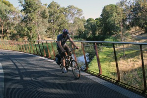 Cyclist crossing linear park behind the Zoo