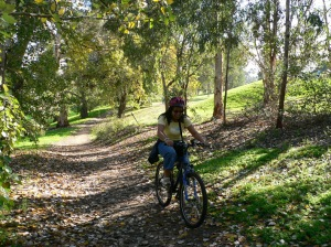 AA bike linear park