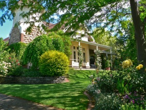 AE Clssic home and garden in North Adelaide