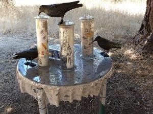 3 crows - Copy
