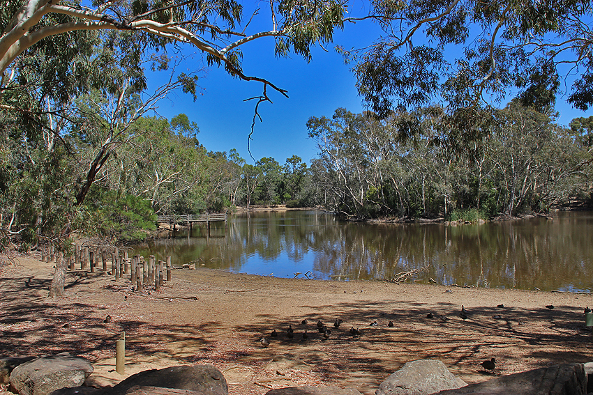 Playford lake at the end of summer