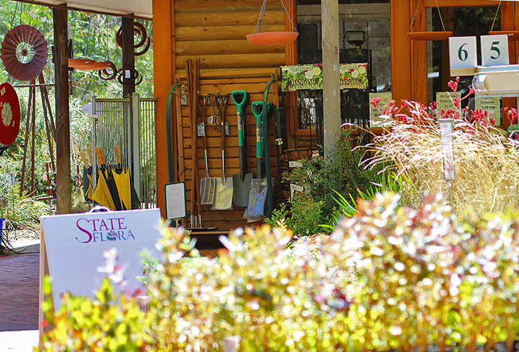 The Belair Naional Park nursery markets wonderful array of native plants as well as an extensive collection of natural history books